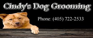 Cindy's Dog Grooming